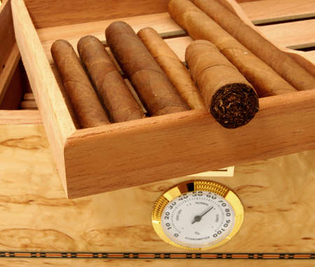 hygrometer: Close up of cigars in open humidor hox