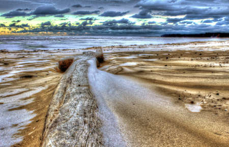 huron: Driftwood  Lone peace of driftwood on a lonely winter beach  Port Crescent State Park  Port Austin, Michigan