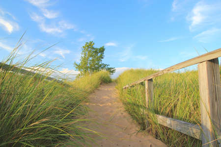 huron: Sandy path winding through the sand dunes to the beach  Port Crescent State Park  Port Austin, Michigan