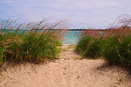 Sandy path leads to the waters edge surrounded by gorgeous dune grass blowing in the breeze