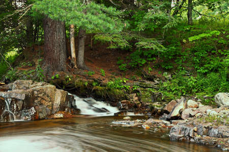 north woods: Small cascade flows through the great north woods on its way to the mighty Lake Superior