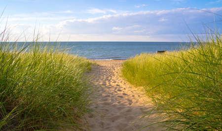 夏のそよ風日光踊り暖かい夏のそよ風のような砂丘草に吹くポート三日月形の州立公園のポート Austin、ミシガン州