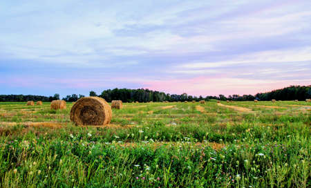 Fall harvest with a twilight sky background   photo
