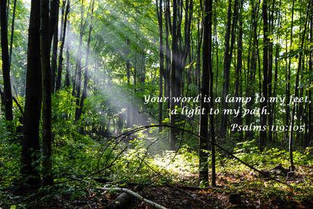 Uw woorden zijn een licht voor mijn pad Citaat uit het boek Psalmen met prachtige landschap als de achtergrond