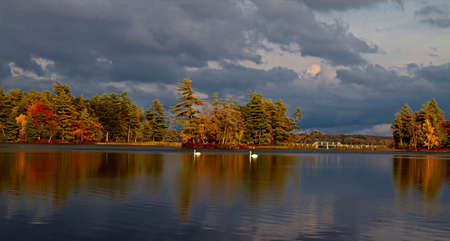 ludington: A pair of swans  glide over a dead calm Lake Hamlin as the storm clouds roll in, and the autumn colors reflect  Ludington State Park  Ludington, Michigan