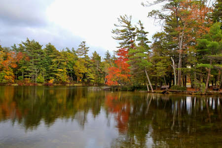 ludington: Fall foliage reflected in the still waters of Lost Lake  Ludington State Park  Ludington, Michigan   Stock Photo
