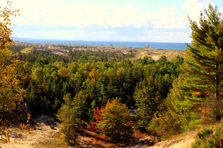 ludington: View from the overlook of the Skyline Trail in Ludington State Park  The forested sand dunes meet the blue waters of Lake Michigan  Ludington, Michigan