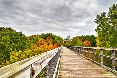 A wooden bridge passes through the canopy of the autumn forest  This bridge was once a railroad bridge and has now been converted to a hiking path  Wadhams to Avoca Linear Trail  Michigan  Stock Photo