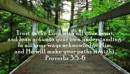 Wooden bridge over a forest ravine with an inspirational verse from the book of Proverbs  Stock Photo
