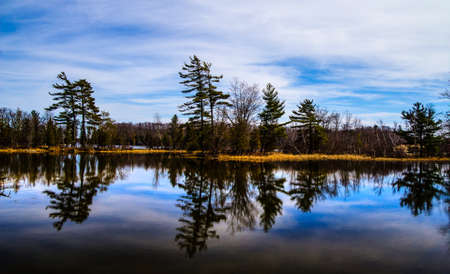 ludington: Pine tree reflections in a pristine wilderness lake  Ludington State Park  Ludington, Michigan