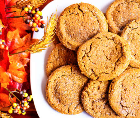 Pumpkin cookies with seasonal d�cor as the backdrop Stock Photo - 28029689