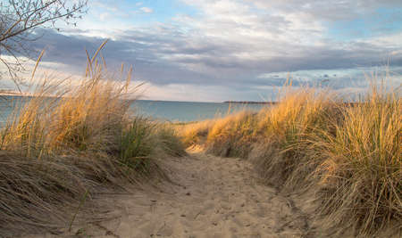 Sand dune and sea oats with blue water horizon