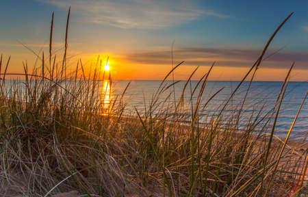 美しい水の地平線から昇る朝日を示します、新しい日の夜明け