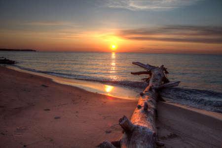Drifwood on the beach at sunset  Port Crescent State Park  Port Austin, Michigan