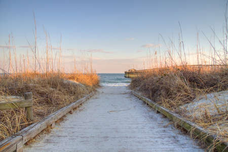 Boardwalk path cuts through sea oats on the Atlantic coast  Myrtle Beach State Park  Myrtle Beach, South Carolina