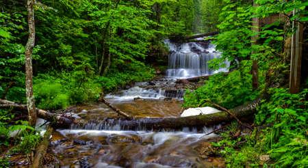 riverside trees: Wagner Falls Scenic Site located in beautiful Munising, Michigan