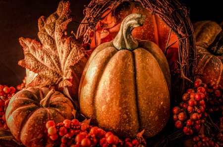harvest background: Thanksgiving Harvest Background. Pumpkins, gourds, cranberries, and autumn leaves create a beautiful centerpiece.