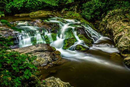 great smoky national park: Smoky Mountain Stream. Small waterfall cascades through the pristine wilderness of the Great Smoky Mountains National Park. Stock Photo