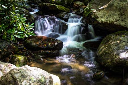 smokies: Smoky Mountain Stream. Peaceful mountain stream flows through the pristine wilderness of the Great Smoky Mountains National Park. Stock Photo