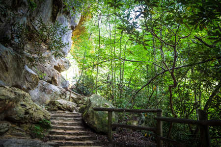 natural bridge state park: Stone Stairway on a hiking trail leads into the sunlight. Natural Bridge State Park. Slade, Kentucky. Stock Photo