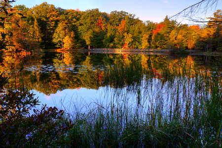 ludington: Autumn Reflections. Reflections of fall foliage and a boardwalk trail in Lost Lake. Ludington, Michigan.
