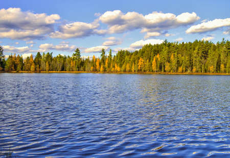 Wilderness Lake. Pristine lake surrounded by a pine forest. Hartwick Pines State Park. Roscommon, Michigan.