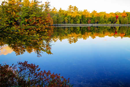 Autumn Lake.  Autumn lake surrounded by fall foliage with a wooden walkway along the shore. photo