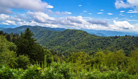 great smokies: Spring Comes To The Smokies. Beautiful sunny spring day at the Newfound Gap Overlook. Great Smoky Mountain National Park. Gatlinburg, Tennessee.