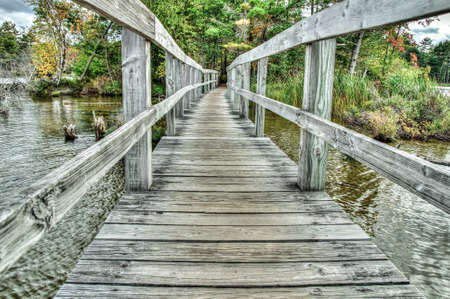 Wooden footbridge crosses over the water and into the forest.