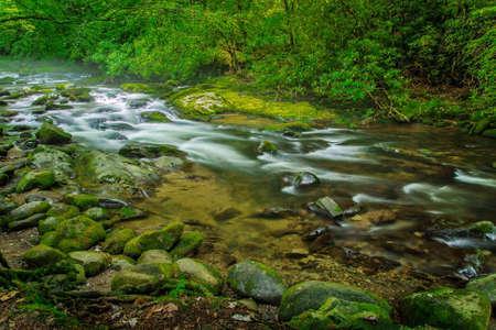 great smoky mountains national park: Smoky Mountain Stream. Peaceful mountain stream flows through the pristine wilderness of the Great Smoky Mountains National Park. Stock Photo