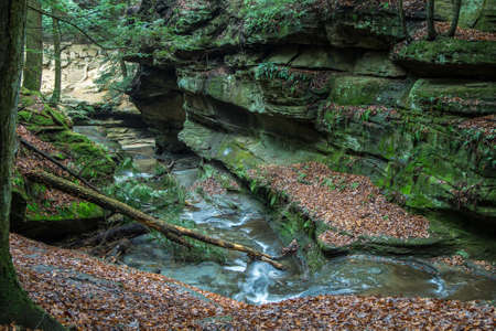 River winds through the bottom of a moss covered gorge. Hocking Hills State Park. Logan, Ohio. photo