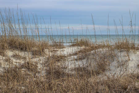 grand strand: The blue waters of the Atlantic with sand dune and dune grass in the foreground.