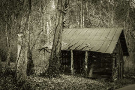 shack: The Old Shack. Shack abandoned in the forest along the Kentucky back roads.