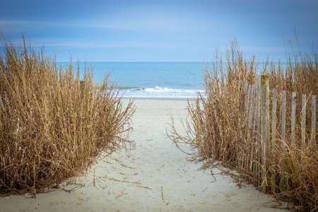 Pad naar het strand. Stockfoto