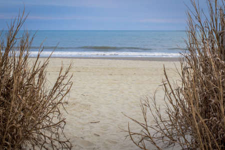 grand strand:  Path to the wide sandy beaches of the Atlantic.  Stock Photo