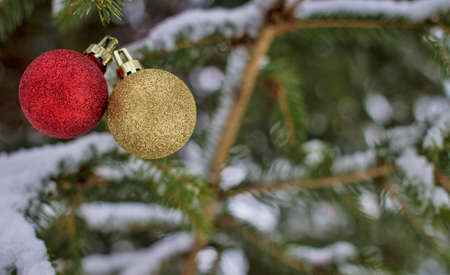 christmas bulbs: Happy Holidays. Red and gold Christmas bulbs hanging from a snow covered pine tree with copy space. Stock Photo