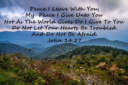 scripture: Peace. Wildflowers of the Appalachian Mountains and scripture quotation from the Book of John. Stock Photo