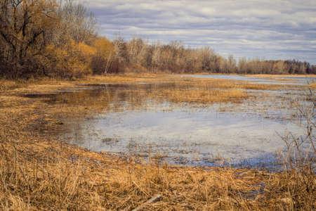 conservacion del agua: Great Lakes Humedales. La belleza de un h�bitat de humedales costeros de los Grandes Lagos raro.