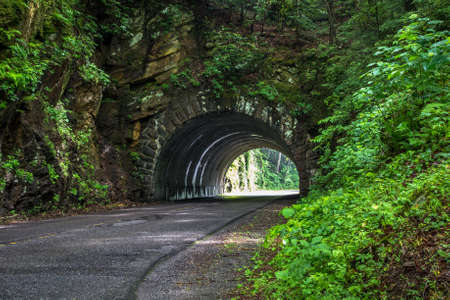 newfound gap: Smoky Mountain Road. Road winds through a tunnel on the Newfound Gap Road in the Great Smoky Mountains National Park.