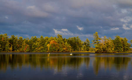 ludington: Northern Autumn Lake. Distant lakeshore bathed in the beauty of the setting sun and fall foliage. Ludington State Park. Ludington, Michigan.