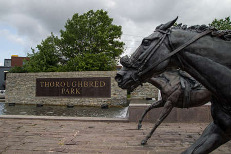 thoroughbred: Thoroughbred Park. May 27, 2015. Lexington, Kenucky. USA - Sculptures of Thoroughbreds race to the finish line in Thoroughbred Park located in downtown Lexington, Kentucky.
