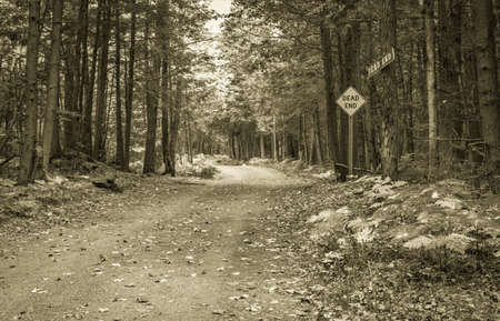 posted: Dead End. Remote dirt road with dead end posted as a road sign and a handmade wooden sign.