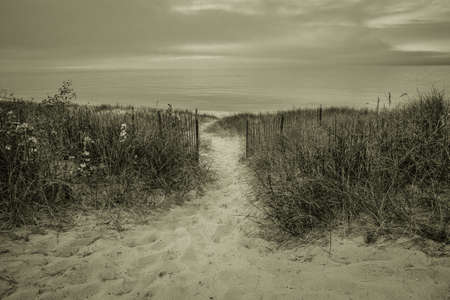 soul searching: Path To The Beach. Path winds through dune grass to a foggy Lake Huron. Stock Photo