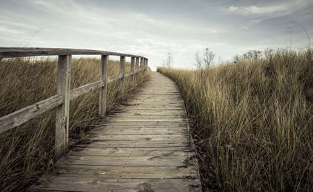boardwalk trail: The Way Forward. Steep boardwalk trail leads to  the top of a sand dune and sweeping vistas of Lake Huron.