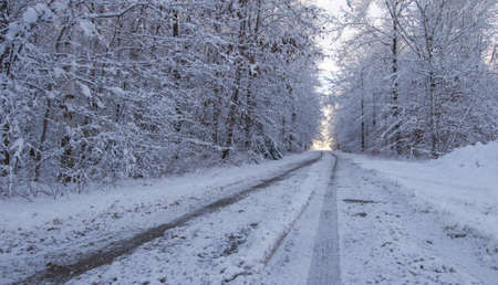 driving conditions: Hazardous Winter Driving. Ice, slush and snow covered road through a beautiful winter forest.
