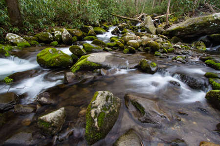 great smoky mountains national park: River On The Roaring Fork. Mountain stream flows along the road on the Roaring Fork Motor Nature Trail in the Great Smoky Mountains National Park in Gatlinburg, Tennessee.