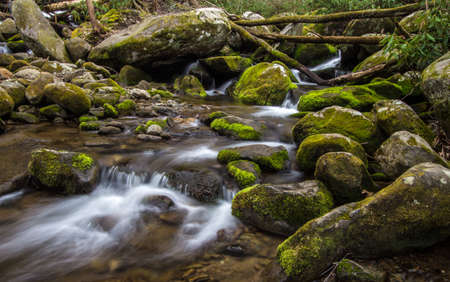 great smoky mountains: Great Smoky Mountain Stream. Stream flows through the wilderness of the Americas most popular national park in the Great Smoky Mountains in Gatlinburg, Tennessee. Stock Photo