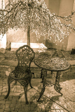 vertical orientation: Outdoor Cafe Seating. Outdoor seating under a flowering tree in vertical orientation.