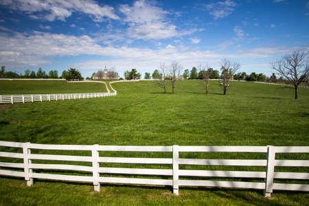 bluegrass: Lexington, Kenutcky, USA. April 22, 2016 - World famous Donamire Farms in Lexington, Kentucky is a premier thoroughbred training and breeding facility. The farm is open to tours through a local tour company.
