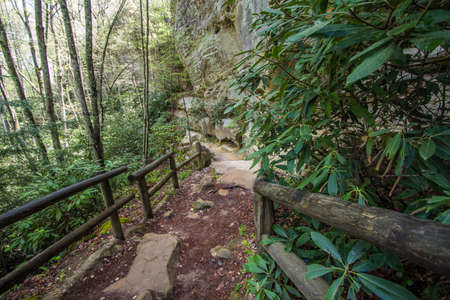 natural bridge: Mountain Hiking Trail In Kentucky. Hiking trail in the gorge of Natural Bridge State Park in Slade, Kentucky. The popular state park offers beautiful scenery and a variety of hiking trails in the mountains of Kentucky.